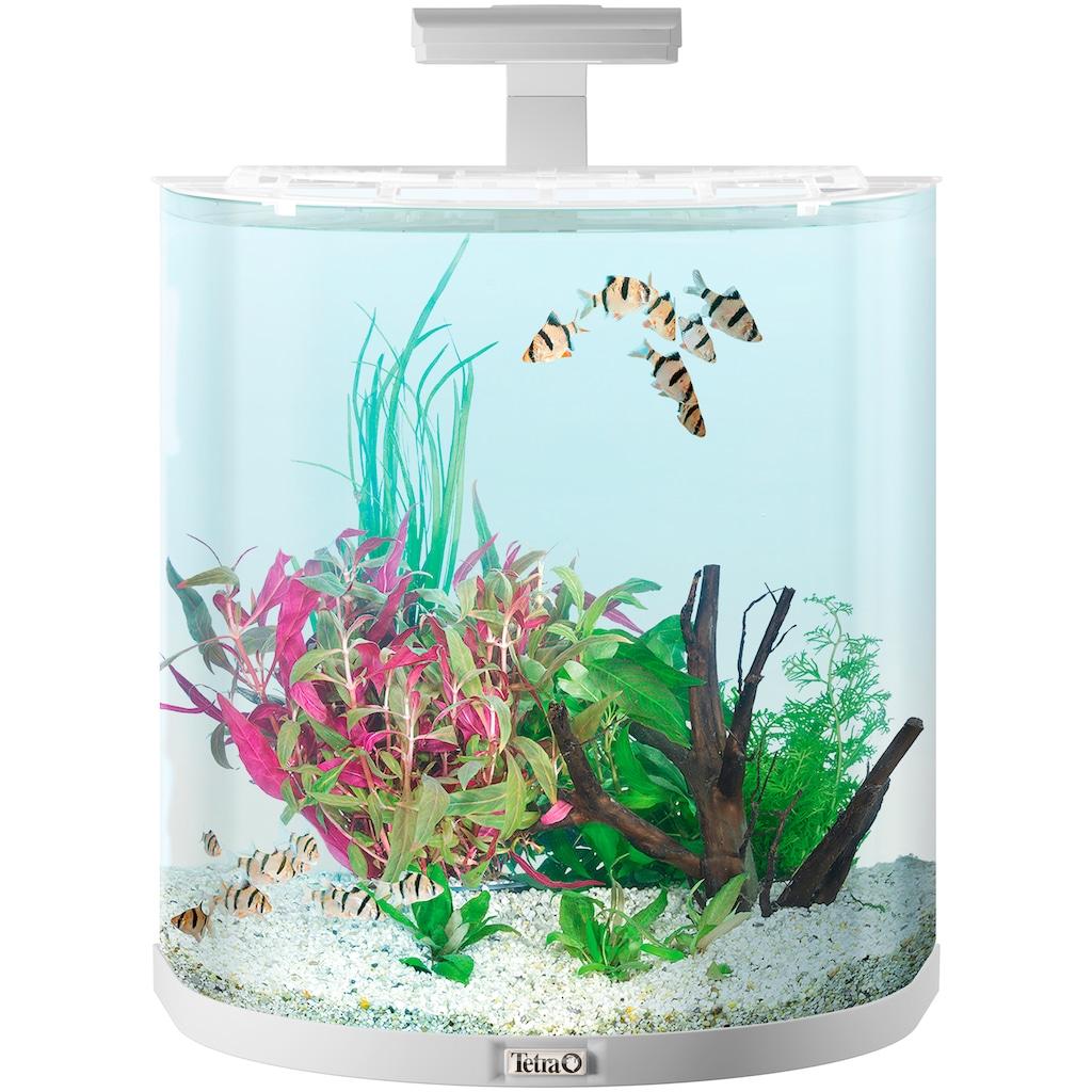Tetra Aquarium »AquaArt Explorer Line 60l LED«, BxTxH: 51x33,5x51,5 cm, 60 l