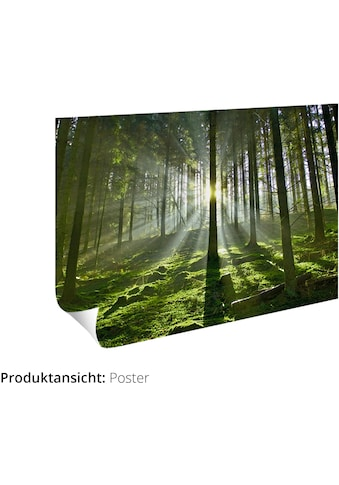 Artland Wandbild »Landschaft im Klausbachtal«, Waldbilder, (1 St.), in vielen Größen &... kaufen