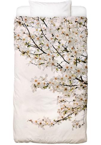 Bettwäsche »Magnolia White«, Juniqe kaufen