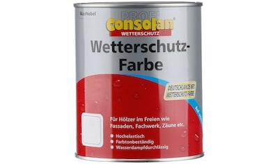 Consolan Wetterschutzfarbe »Profi Holzschutz«, 0,75 Liter, grau kaufen