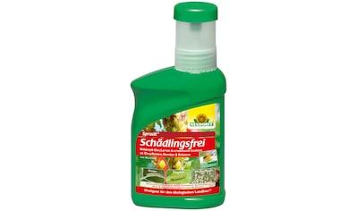 Neudorff Pflanzenschutzmittel »Spruzit Schädlingsfrei«, 250 ml kaufen
