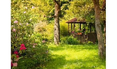 Papermoon Fototapete »Magic Garden« kaufen