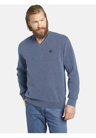 Jan Vanderstorm Strickpullover »KEIMO«, bequemer Basic-Pullover kaufen