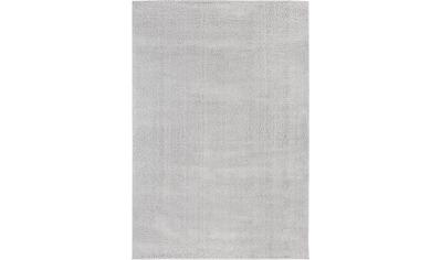 DELAVITA Teppich »Calpe«, rechteckig, 26 mm Höhe, besonders weich durch Microfaser, Wohnzimmer kaufen