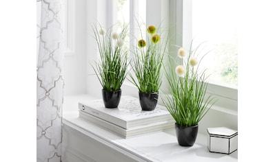 Leonique Kunstgras »Grasbusch mit Kletten« (Set, 3 Stück) kaufen