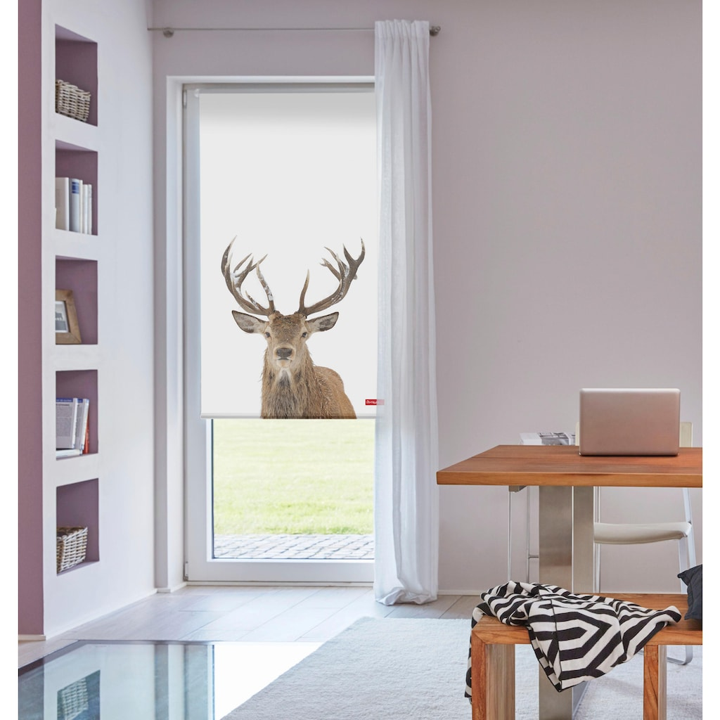 Seitenzugrollo »Klemmfix Motiv Hirsch«, LICHTBLICK, Lichtschutz, ohne Bohren, freihängend