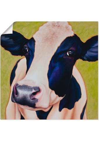 Artland Wandbild »Kuh Paula«, Haustiere, (1 St.), in vielen Größen & Produktarten... kaufen