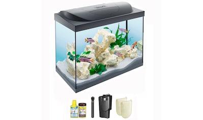 Tetra Aquarien-Set »Starter Line 80 LED«, BxTxH: 61x32x51 cm, 80 l kaufen