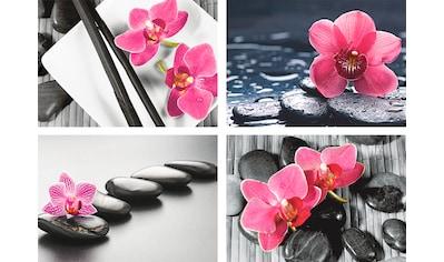 Artland Poster »Asiatische Komposition Orchidee Zen« kaufen