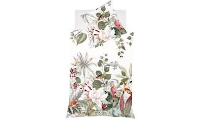 fleuresse Wendebettwäsche »Bed Art S«, tropische Verführung kaufen
