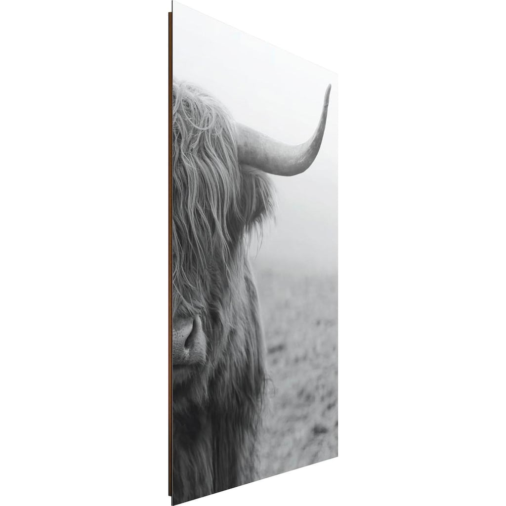 Reinders! Deco-Panel »Highlander Bulle«