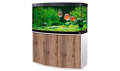 FLUVAL Aquarien - Set »Vicenza 260 mit App - Steuerung«, BxTxH: 121x46x134 cm, 260 l kaufen
