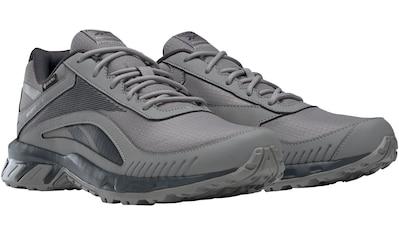 Reebok Walkingschuh »RIDGERIDER 6 Gore-Tex M« kaufen