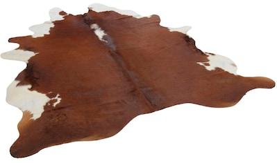 THEKO Fellteppich »Muh 681«, fellförmig, 3 mm Höhe, echtes Rinderfell, Naturprodukt - daher ist jedes Rinderfell ist ein Einzelstück, Wohnzimmer kaufen