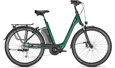 Raleigh E-Bike »CORBY 9 XXL« kaufen