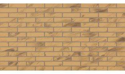 ELASTOLITH Sparset: Verblendsteine »Barcelona«, beige/natur, für den Innenbereich 6 m² kaufen