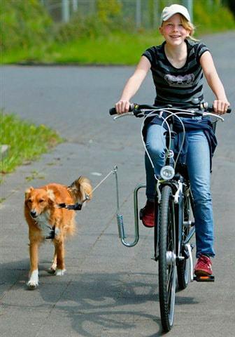 HEIM Fahrradleine, mit Fahrradhalter für Hunde bis 20 kg silberfarben Fahrradleine Heim