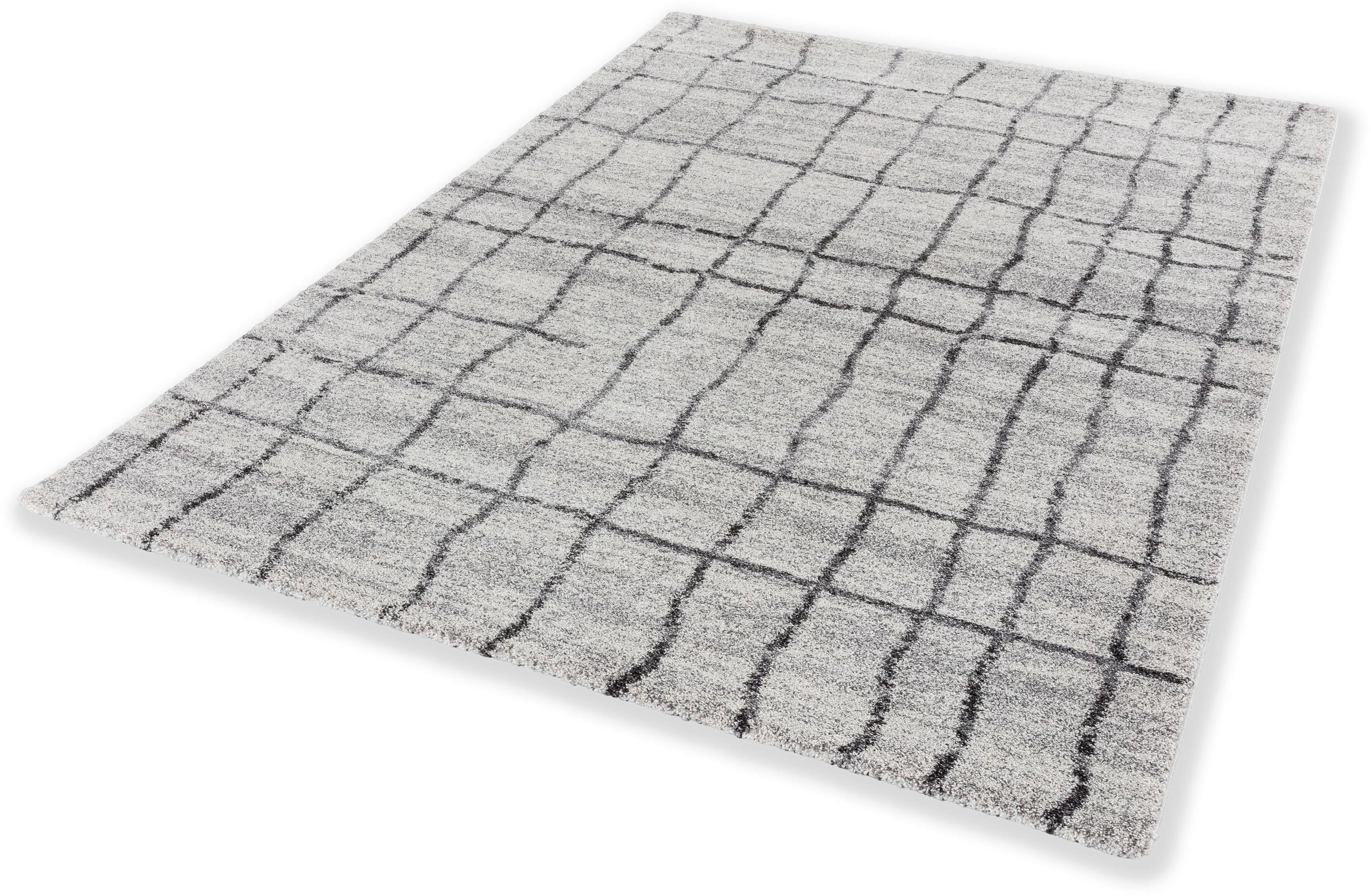 Teppich Savona 193 ASTRA rechteckig Höhe 20 mm maschinell gewebt