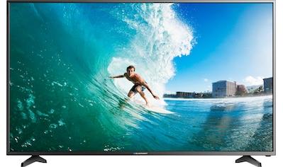Blaupunkt LED-Fernseher »BLA-50/405V«, 127 cm/50 Zoll, 4K Ultra HD, Smart-TV kaufen