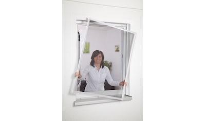 HECHT Insektenschutz - Fenster »BASIC«, weiß/anthrazit, BxH: 80x100 cm kaufen
