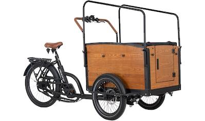 Adore E-Bike »Straight«, 7 Gang, Shimano, Nexus, Mittelmotor 250 W kaufen