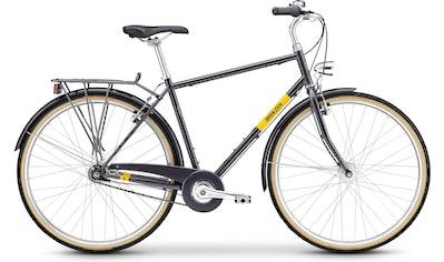 BREEZER Bikes Trekkingrad »DOWNTOWN 7+«, 7 Gang Nabenschaltung kaufen