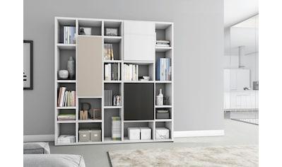 Raumteilerregal »TORO 541«, Breite 214 cm kaufen