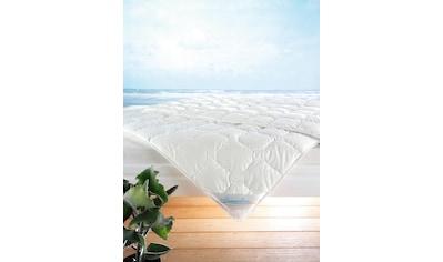 Baumwollbettdecke, »Wash Cotton«, f.a.n. Frankenstolz, Füllung: Reine Baumwolle (100% Baumwolle), Bezug: 100% Baumwolle kaufen