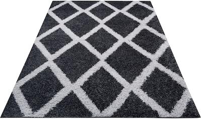 Home affaire Hochflor-Teppich »Leroy«, rechteckig, 30 mm Höhe, Wohnzimmer kaufen