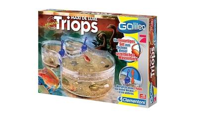 Clementoni® Experimentierkasten »Galileo Triops Maxi de Luxe«, Made in Europe kaufen