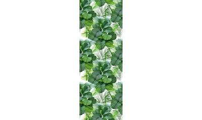 queence Vinyltapete »Tropische Blätter-Grün«, 90 x 250 cm, selbstklebend kaufen