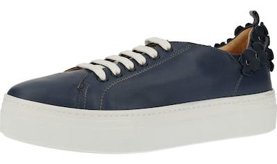 Darkwood Sneaker »Leder« kaufen