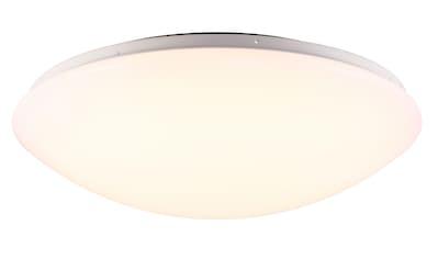 Nordlux LED Deckenleuchte »ASK«, LED-Modul, 5 Jahre Garantie auf die LED kaufen