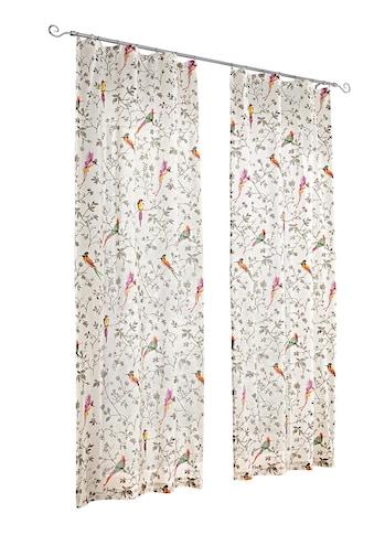 heine home Vorhang kaufen