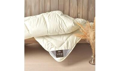 SEI Design Naturfaserbettdecke »WOOL Premium«, extrawarm, Füllung 100% echter naturbelassener Schurwolle, Bezug 100% Baumwolle, (1 St.) kaufen