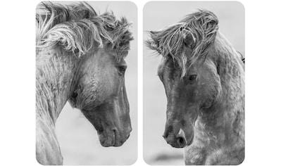 WENKO Herd-Abdeckplatte »Horses«, (Set, 2 tlg.), für alle Herdarten kaufen