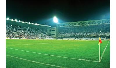 Consalnet Fototapete »Sport Fußballfeld«, Motiv kaufen