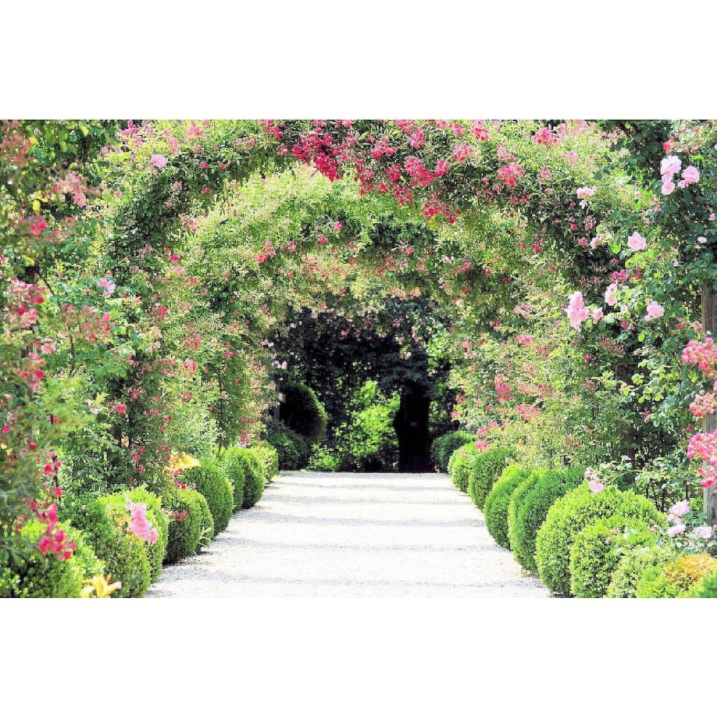 Home affaire Fototapete »Rose Arch Garden«