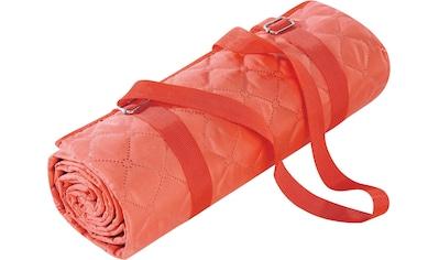 BIEDERLACK Picknickdecke »Picnic«, Nässe und Schmutz abweisende Unterseite kaufen