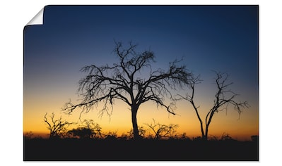 Artland Wandbild »Bäume im Sonnenuntergang«, Afrika, (1 St.), in vielen Größen &... kaufen