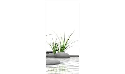 Schulte Duschrückwand »Decodesign Foto« kaufen