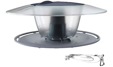 Prosperplast Vogelhaus »Birdyfeed Round«, BxTxH: 29,4x25,8x12,2 cm kaufen