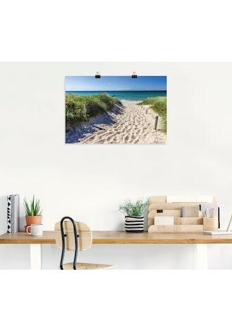 Artland Wandbild »Weg zum Strand an der Ostsee«, Strandbilder, (1 St.), in vielen... kaufen