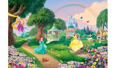 KOMAR Set: Fototapete »Disney Princess Rainbow«, Ausgezeichnet lichtbeständig kaufen