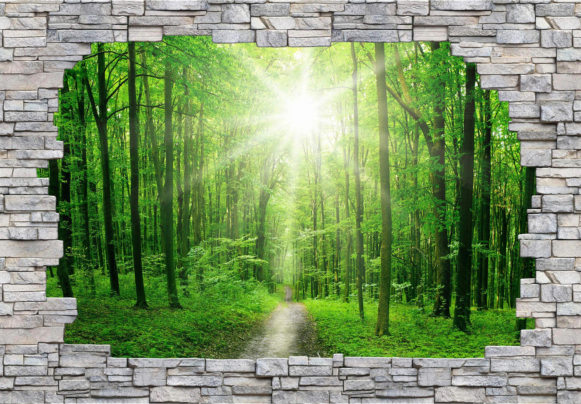 3D Fototapete  3D Sunny Forest Mauer , 384/260 cm Preisvergleich
