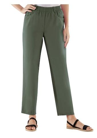 Classic Basics Hose aus reiner Baumwolle kaufen