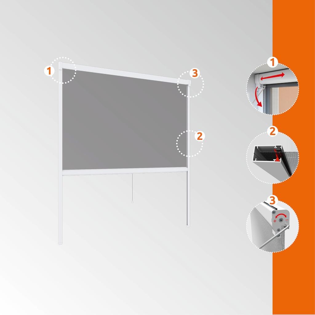 Windhager Insektenschutz-Rollo »PLUS«, BxH: 130x160 cm