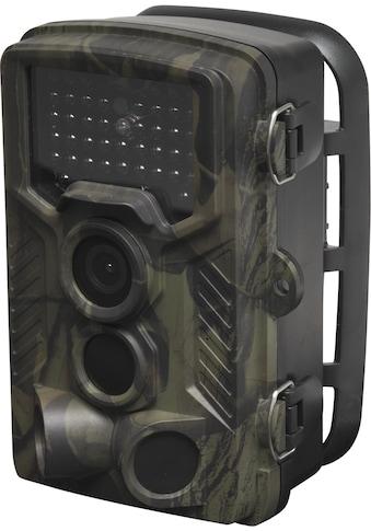 Denver »Wildkamera / Überwa chungskamera WCT - 8010« Überwachungskamera, Außenbereich kaufen
