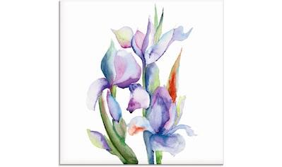 Artland Glasbild »Iris«, Blumen, (1 St.) kaufen