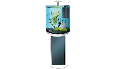 Tetra Aquariumunterschrank »AquaArt Explorer LED« kaufen